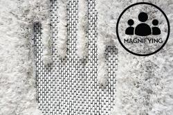 MAGNIFYING, No. 7: Carol Sogard